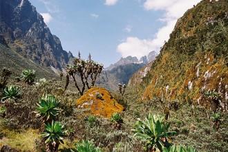 Восхождение на горы Рувензори