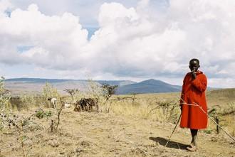 Великая рифтовая долина – геологическое чудо Африки